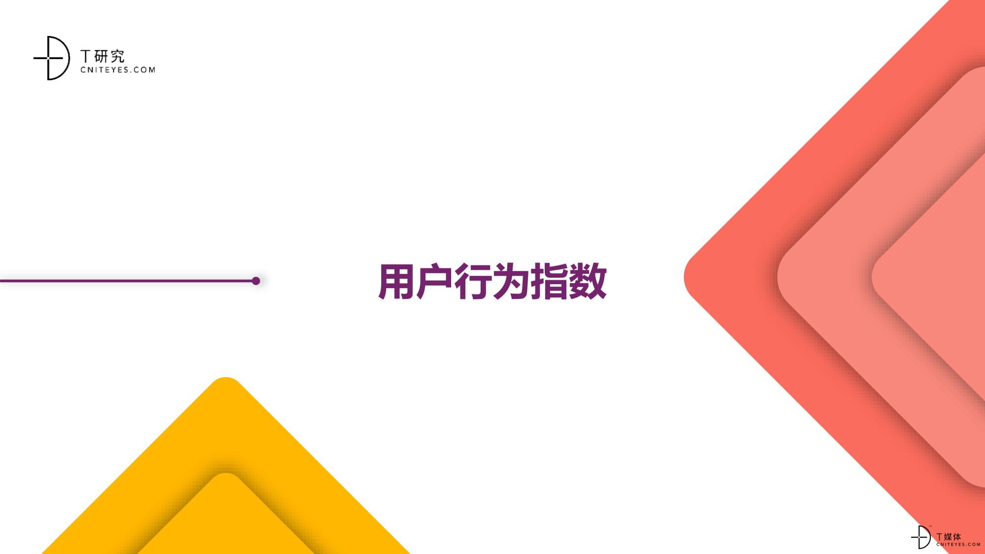 2020中国BI指数测评报告-10.jpg