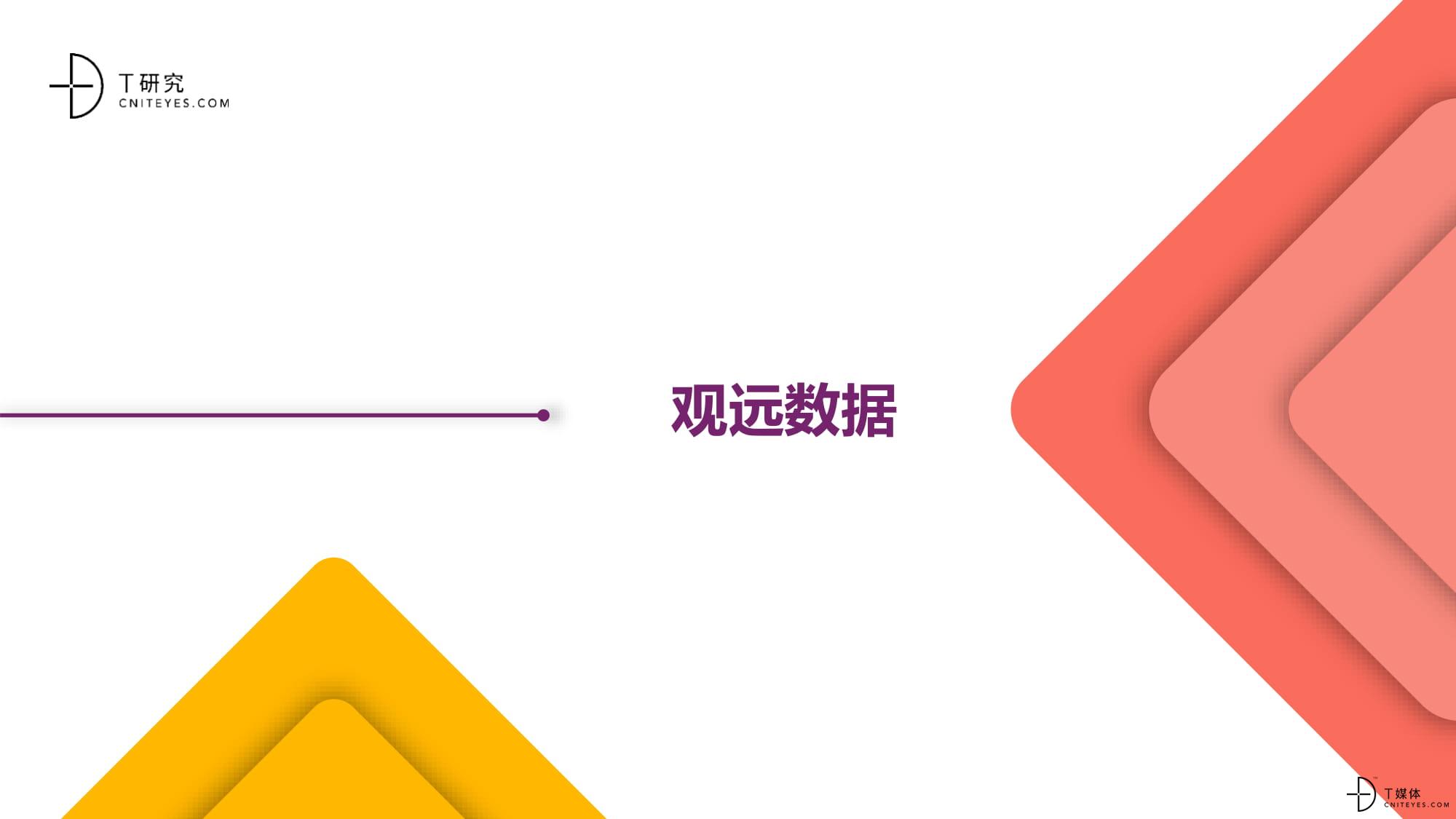 2020中国BI指数测评报告-24.jpg
